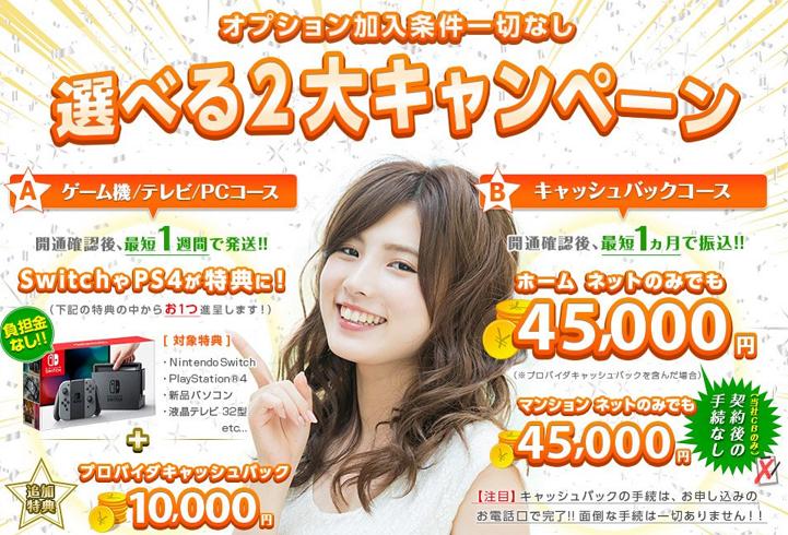 auひかり×So-net選べる2大キャンペーン